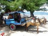 Horse Car Gili Air Divers - Gili Meno Divers Gili Trawangan Lombok Bali Indonesia